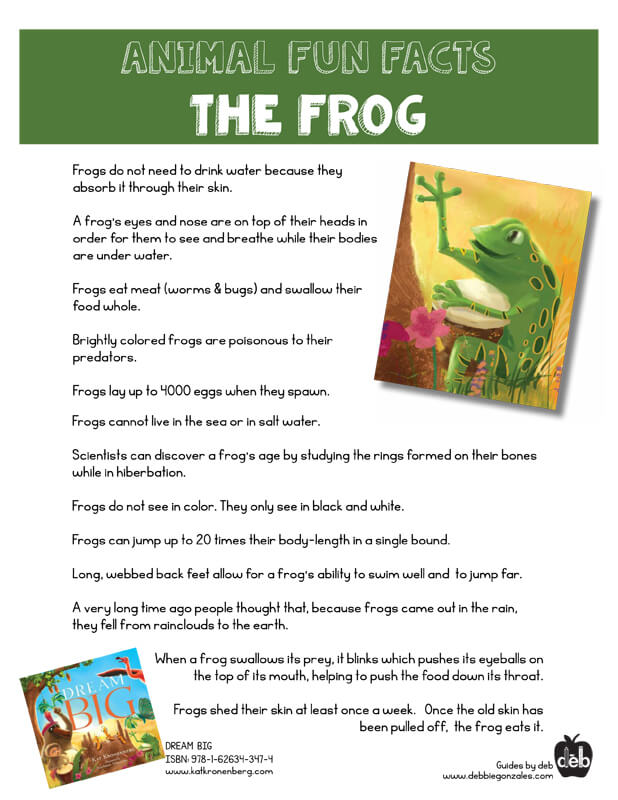 Animal Fact Sheet - Curriculum Idea - The Frog