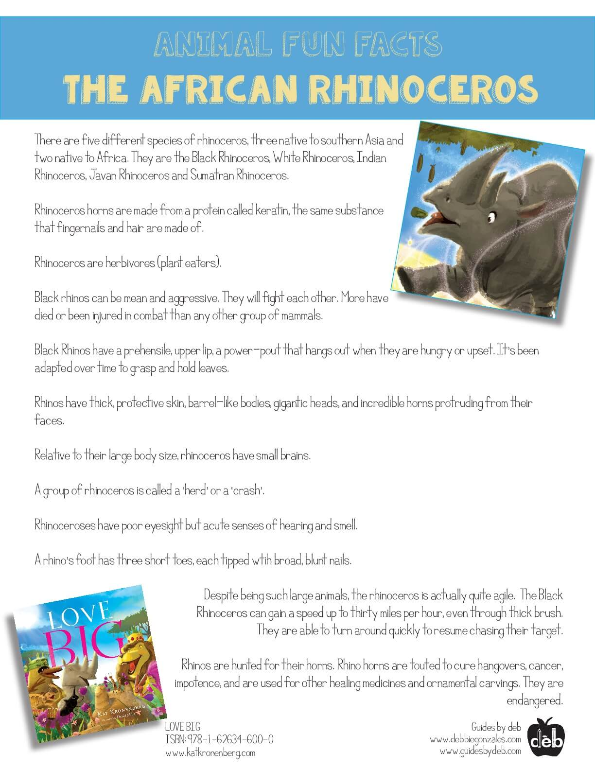 Animal Fact Sheet - Curriculum Idea - The African Termite